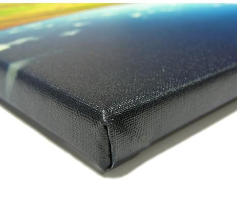 Fotoplátno v profesionální variantě s ochranným lakem má syté barvy, vysokou odolnost a může k němu být i ozdobný rám.